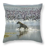Spotted Hyaena Hunting For Food Throw Pillow