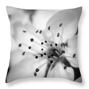 Spring Blooms 6692 Throw Pillow
