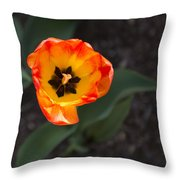 Spring Flowers No. 10 Throw Pillow