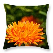 Spring Fresh  Throw Pillow