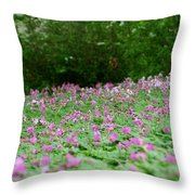 Spring Meadow Throw Pillow