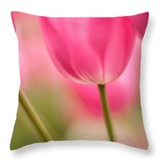 Spring Trio Throw Pillow by Mike Reid