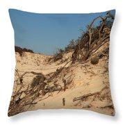 St Joseph Sand Dunes Throw Pillow
