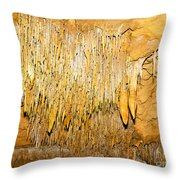 Stalactite Formations In Florida Throw Pillow