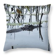 Stealth V5 Throw Pillow
