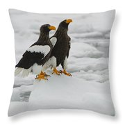 Stellers Sea Eagles Throw Pillow