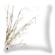 Stems In Snow Throw Pillow