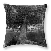 Still Hanging On Throw Pillow