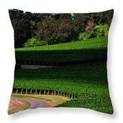 Stoller Vineyard Roads 19050 Throw Pillow
