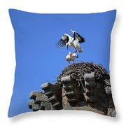 Storks On Top Of Valdecorneja Castle Throw Pillow