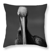 Stormy Pelican Throw Pillow