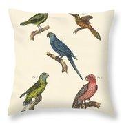 Strange Climbing Birds Throw Pillow