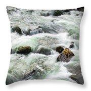 Stream Great Smoky Mountains  Throw Pillow