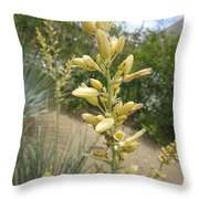 1 String Flowers    Photographed Las Vegas May 2014 Throw Pillow