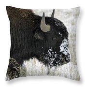 Strolling Through A Snowy Meadow Throw Pillow