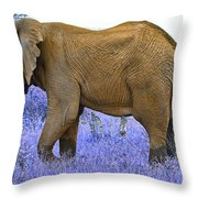 Styled Environment-the Modern Elephant Bull Throw Pillow