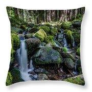 Sul Duc Creek Throw Pillow