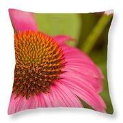 Summer Cone Throw Pillow