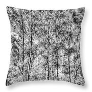 Summer Forest Trees Throw Pillow