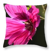 Summer Impressions Throw Pillow
