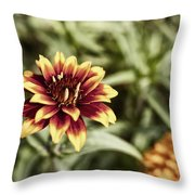 Summer Jardin Throw Pillow