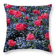 Sun-drenched Flowerbed Throw Pillow