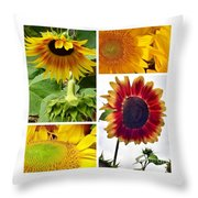 Sunflower Collage   Throw Pillow