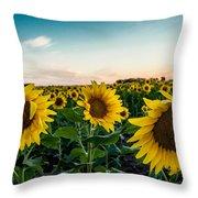 Sister Sunflowers Throw Pillow