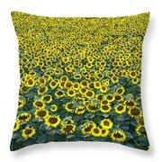 Sunflower Nirvana 13 Throw Pillow