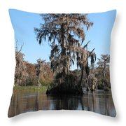 Walkula Springs Reflection Throw Pillow