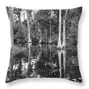 Swampland Throw Pillow