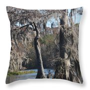 Swampreflection  Throw Pillow