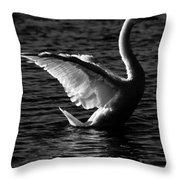 Swan Wingspan Throw Pillow