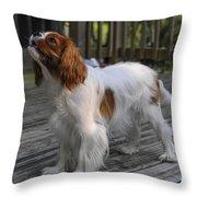 Sweet Daisy Throw Pillow