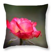 Sweet October Rose Throw Pillow