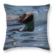 Swimming Sea Lion Throw Pillow