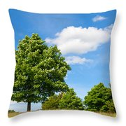 Sycamore  Acer Pseudoplatanus Throw Pillow