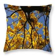 Tabebuia Tree Blossoms Throw Pillow