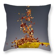 1 Tablespoon Red Pepper Flakes Throw Pillow