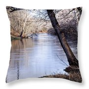 Take Me To The River Throw Pillow