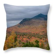 Tapestry Of Fall Colors Throw Pillow