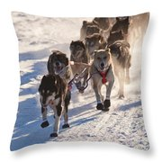 Team Of Sleigh Dogs Pulling Throw Pillow