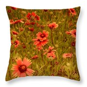 Texas Wildflowers V5 Throw Pillow