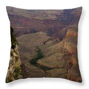 The Awe Of Nature Throw Pillow