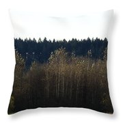 The Back Acres Throw Pillow