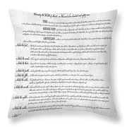 The Bill Of Rights H K Throw Pillow