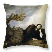 Jacob's Dream Throw Pillow