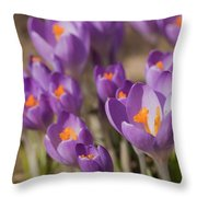 The Crocus Flowers Throw Pillow