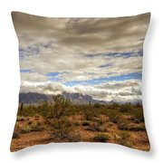 The Desert Southwest  Throw Pillow