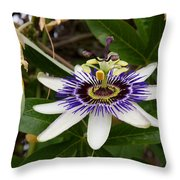 The Flower 13 Throw Pillow